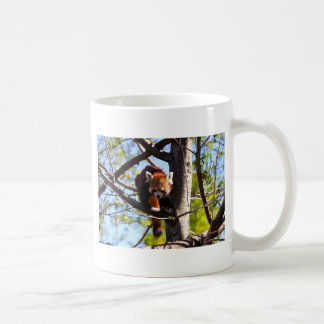 Red Panda climbing down tree Coffee Mug