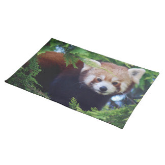 Red Panda Cloth Placemat