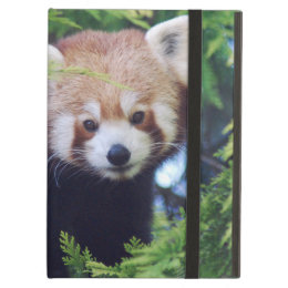 Red Panda Cover For iPad Air