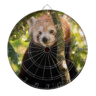 Red panda dart board