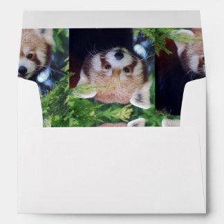 Red Panda Envelopes