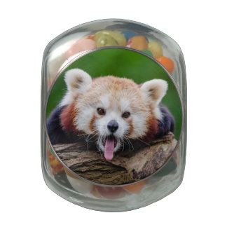 Red Panda Glass Candy Jar