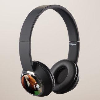 Red panda headphones