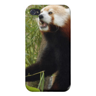 Red Panda i Cases For iPhone 4