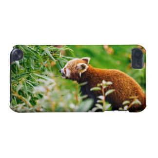 Red Panda In A Green Environment iPod Touch 5G Case
