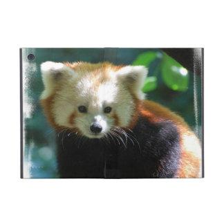 Red Panda Covers For iPad Mini