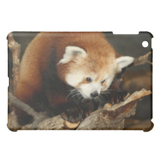 Red Panda iPad Mini Cover