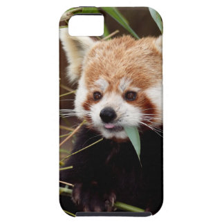 Red Panda iPhone SE/5/5s Case