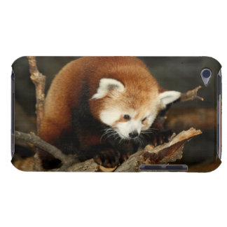 Red Panda iPod Touch Case