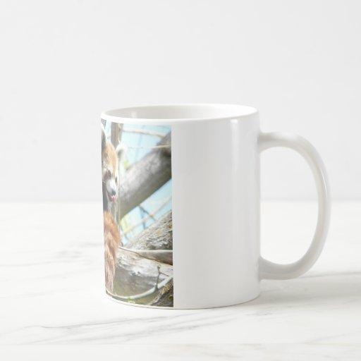 red panda lickin classic white coffee mug