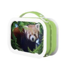 Red Panda Lunch Box