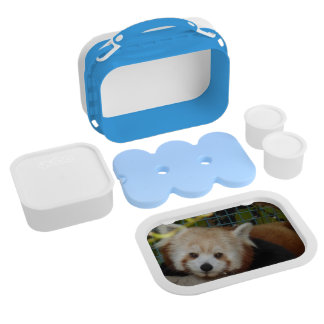 Red Panda Lunch Pail Replacement Plate