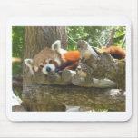 red panda mouse mat