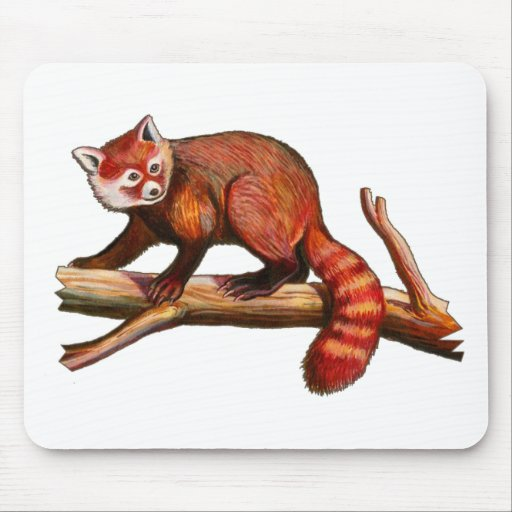 Red Panda Mousepads