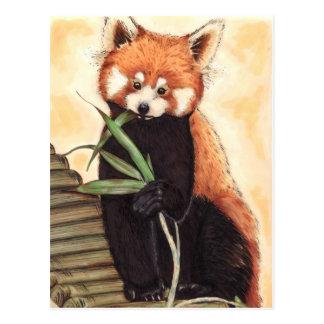 Red Panda Nom Postcard