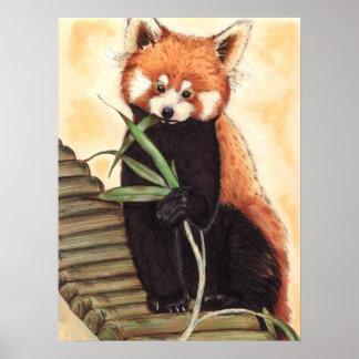 Red Panda Nom Poster
