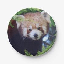 Red Panda Paper Plate