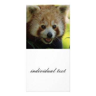 red panda photo card