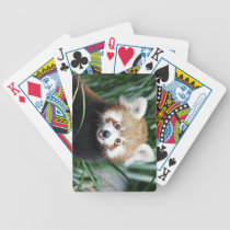 Red Panda Playing Cards