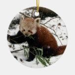 Red panda round ceramic decoration