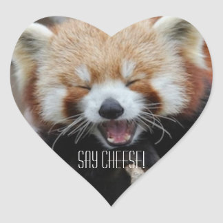 Red Panda - Say Cheese! Sticker