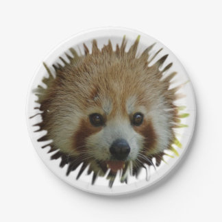 red panda 7 inch paper plate
