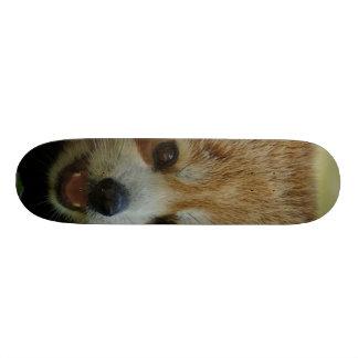 red panda skate boards