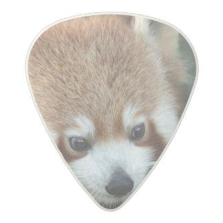 Red Panda, Taronga Zoo, Sydney, Australia Acetal Guitar Pick