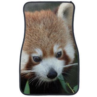 Red Panda, Taronga Zoo, Sydney, Australia Car Floor Mat