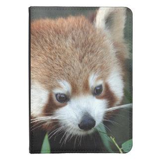 Red Panda, Taronga Zoo, Sydney, Australia Kindle Cover