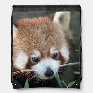 Red Panda, Taronga Zoo, Sydney, Australia Drawstring Bag
