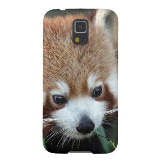 Red Panda, Taronga Zoo, Sydney, Australia Galaxy S5 Case