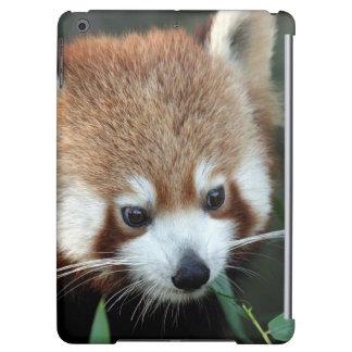 Red Panda, Taronga Zoo, Sydney, Australia iPad Air Covers