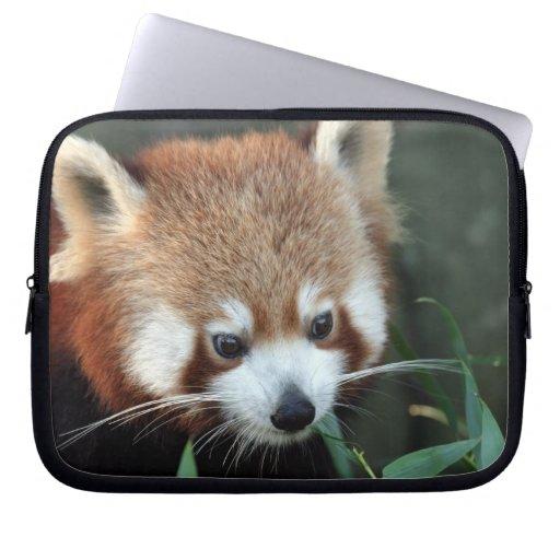Red Panda, Taronga Zoo, Sydney, Australia Computer Sleeves