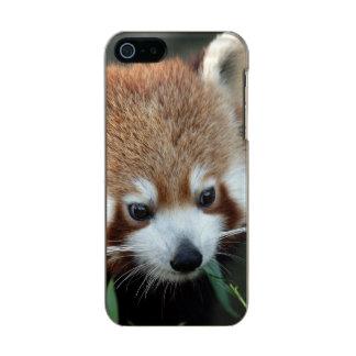 Red Panda, Taronga Zoo, Sydney, Australia Metallic Phone Case For iPhone SE/5/5s