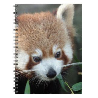 Red Panda, Taronga Zoo, Sydney, Australia Spiral Note Book
