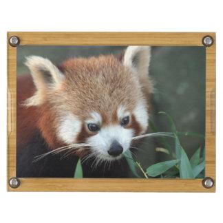 Red Panda, Taronga Zoo, Sydney, Australia Rectangular Cheese Board