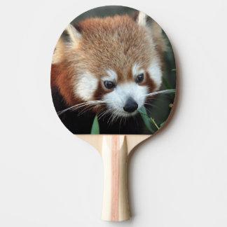 Red Panda, Taronga Zoo, Sydney, Australia Ping-Pong Paddle