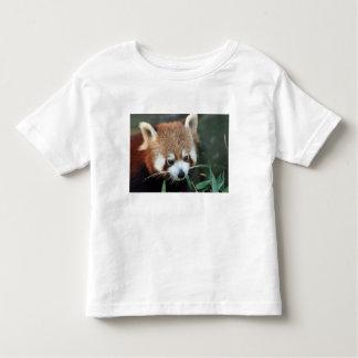 Red Panda, Taronga Zoo, Sydney, Australia Toddler T-shirt