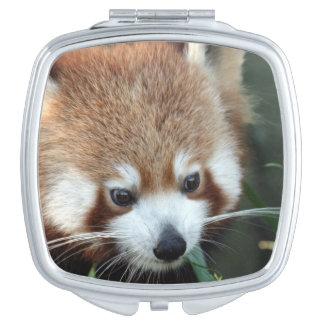 Red Panda, Taronga Zoo, Sydney, Australia Vanity Mirror