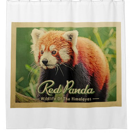Red Panda - Wildlife of the Himalayas Shower Curtain