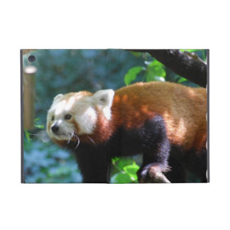 Red Panda With a Cute Face Cover For iPad Mini