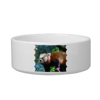 Red Panda With a Cute Face Cat Food Bowls