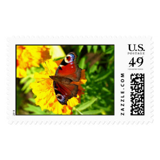 Red Papillion Butterfly Postage