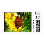 Red Papillion Butterfly Stamps