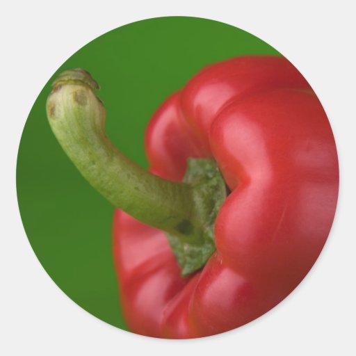 red paprika classic round sticker