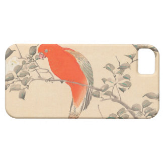 Red Parrot and White Flower Matsumoto Keibun iPhone SE/5/5s Case