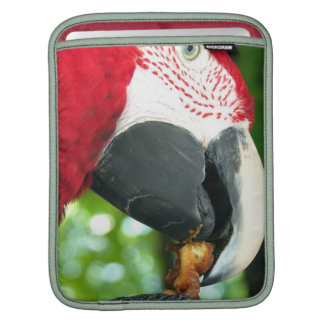 Red Parrot iPad Sleeve