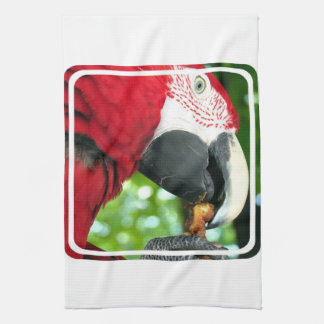 Red Parrot Kitchen Towel