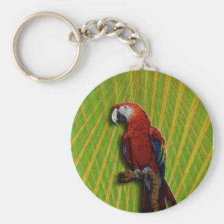 Red Parrot & Palms keychain